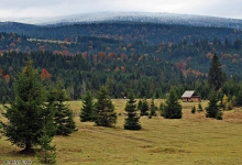 Come and relax in Transylvania!
